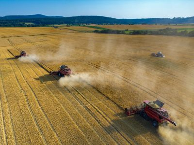 wheat harvest three red combines